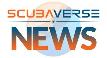 SV_News.jpg