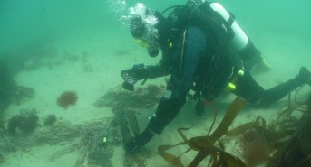 Poldark-wreck-2-Archaeologist-David-Gibbins-photographing-musket-barrels-on-the-wreck-photo-Mark-Milburn.jpg