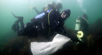 Underwater-litter-picking.jpg