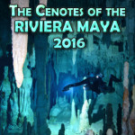 Group logo of THE CENOTES OF THE RIVIERA MAYA 2016