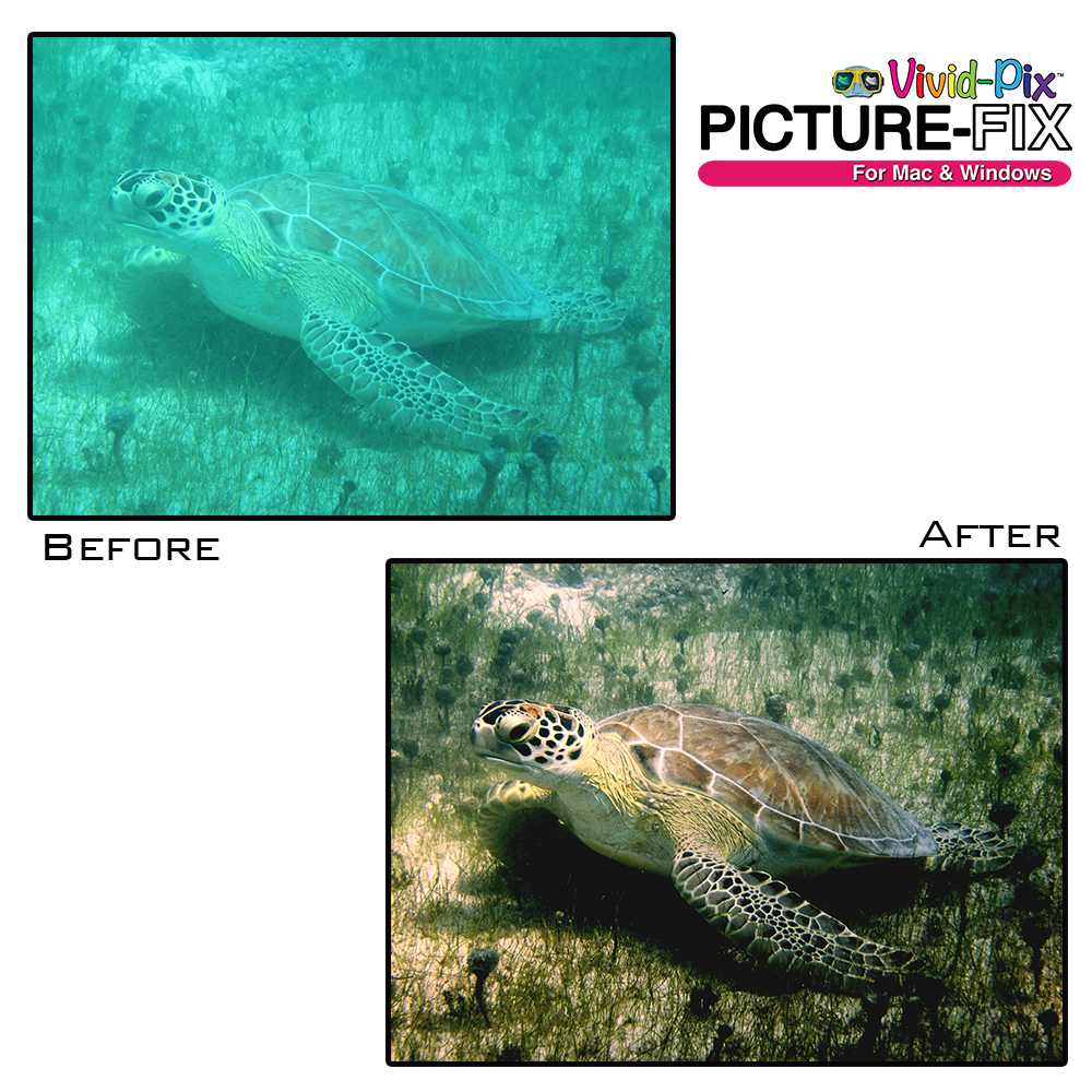 VP-Before-After-1 (2)