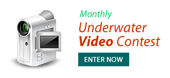 Enter Underwater Video Contest