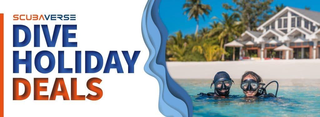 Dive Holiday Deals