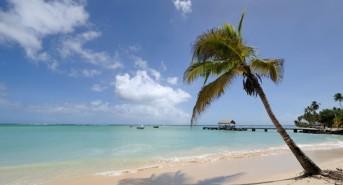 Oonas-Tobago-comp-e1417515260456.jpg